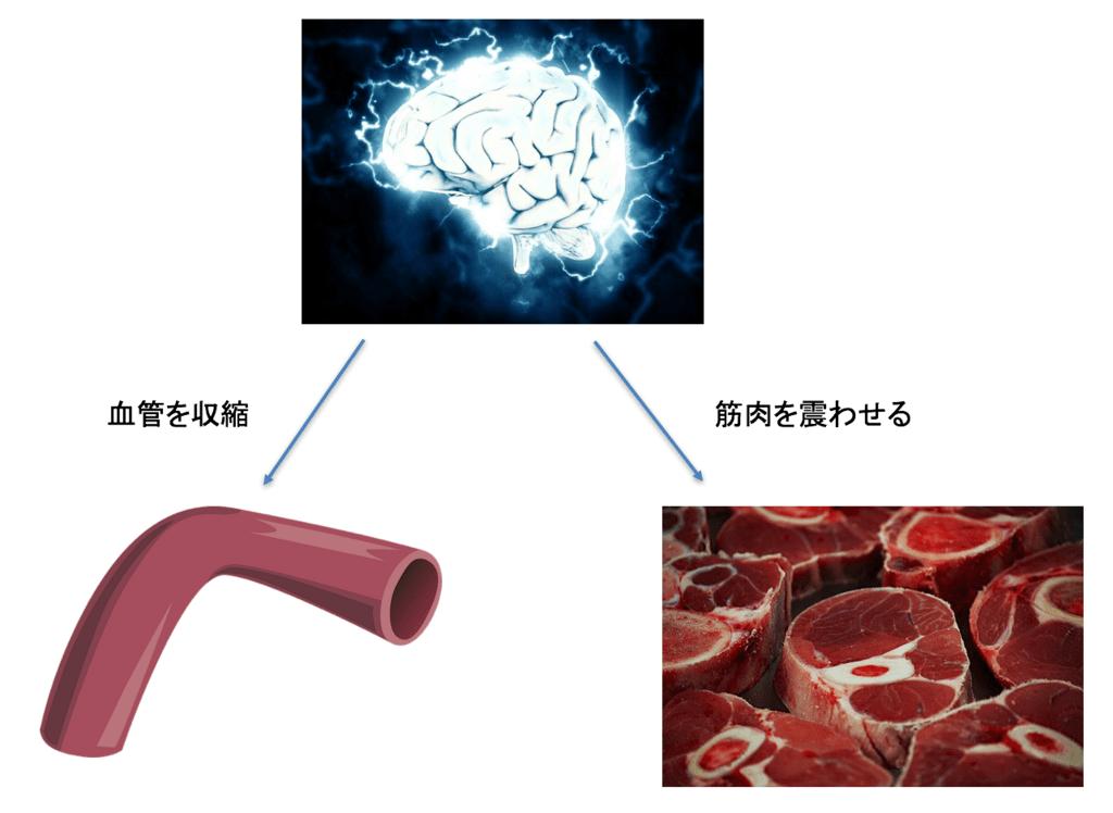 f:id:Dr-KID:20180311052206p:plain